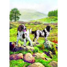 Country Cards 10496 Open Dogs