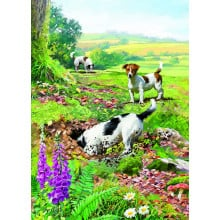 Country Cards 10559 Open Dogs