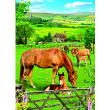Country Cards 10615 Open Horses