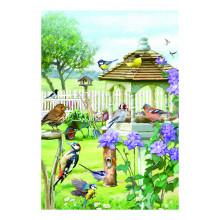 Country Cards 10625 Open Birds