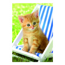 Country Cards 10672 Open Cats
