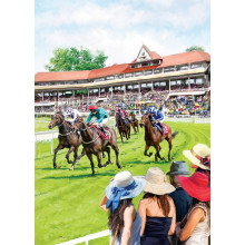 Country Cards 10720 Open Horse Racing
