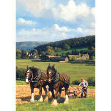 Country Cards 10724 Blank Horses