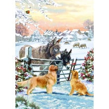 Open Male Trad 40 Christmas Cards  - Cards are printed with Christmas Greetings in Gold Foil