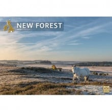DD01223 A4 Calendar New Forest