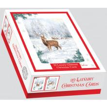 XD00615 Box 20 Woodland Walk Cards