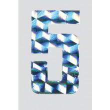 Roman Labels Holographic Numerals No.5
