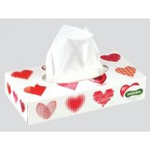 Paloma Tissues Box 100
