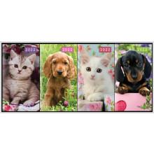 DD00508 Slim 2WTV Diary Cats & Dogs