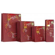 XD02404 Gift Bag Garland Large