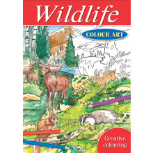 Colour Art Colouring Book Wildlife