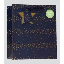XD02309 Gift Bag Starlight Medium
