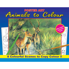 Nature Colouring Book 16 Pages 4 Asst