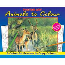 S9306 Nature To Colour 4 Asst