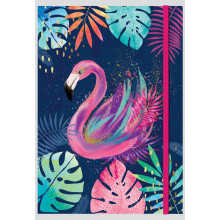 A4 Banded Tropicana Notebook Assorted