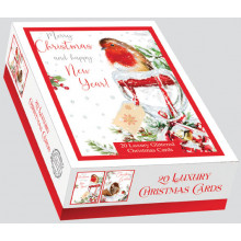 XD00603 Box 20 Red Red Robin Cards