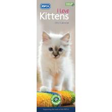 DD01103 Slim Calender RSPCA Kittens
