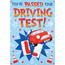 S13444 Cards Driving Test Pass Male