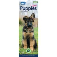 DD01104 Slim Calendar RSPCA Puppies