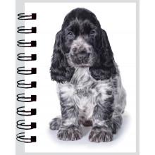 Mini Twinwire Notebooks Puppies/Kittens