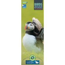 DD01101 Slim Calendar RSPB Birds