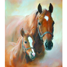 Country Cards 8052 Open Horses