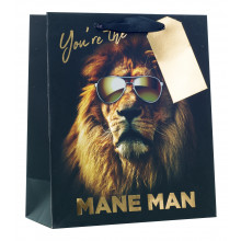 Gift Bag Mane Man Medium