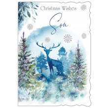 JXC0796 Son Trad 50 Christmas Cards